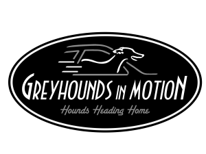 Greyhounds in Motion